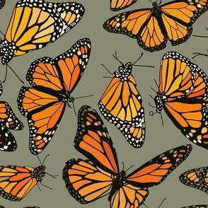 """Monarchs on sage green 18"""""""