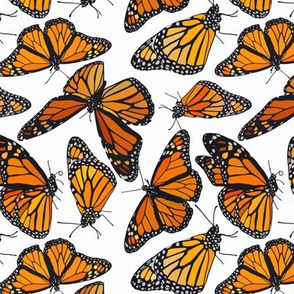 "Monarchs on white 6"""