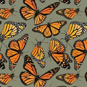 """Monarchs on sage green 6"""""""