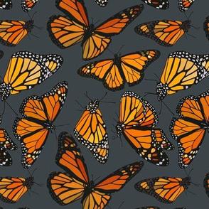 "Monarchs on navy 6"""