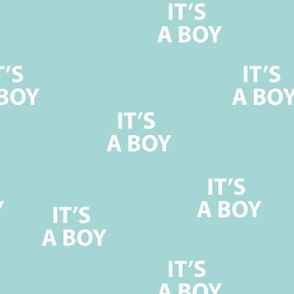 Sweet it's a boy minimal baby shower text design abstract typography print with expressions from the heart blue white boys
