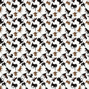 Arabian Horse Trot On - Brown Horses with White Background