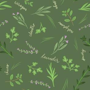 Kitchen Herbs 02