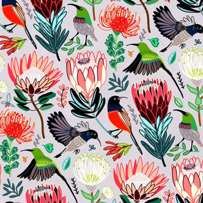 Sunbirds & Proteas On Grey (Large Version)