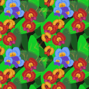 Pea wildflowers on foliage