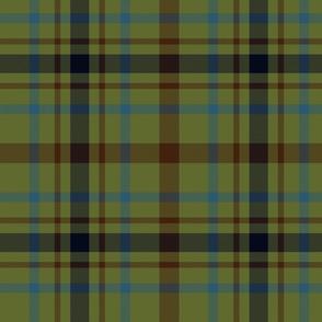"""MacDonagh tartan - 10"""" muted"""