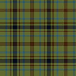 """MacDonagh tartan - 8"""" muted"""