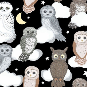 Owls Nighty