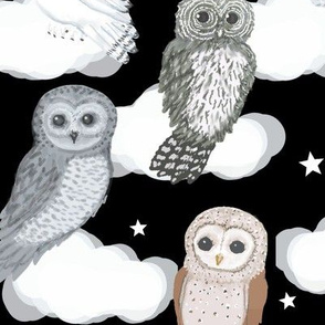 Owls Nighty