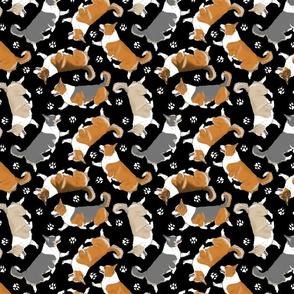 Trotting tailed Pembroke Welsh Corgis and paw prints - black