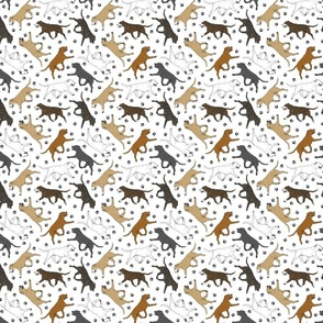 Trotting Staffordshire Bull Terriers and paw prints - tiny white
