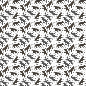 Trotting brindle and black Staffordshire Bull Terriers and paw prints - tiny white
