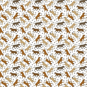 Trotting red Staffordshire Bull Terriers and paw prints - tiny white