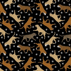 Trotting red Staffordshire Bull Terriers and paw prints - black
