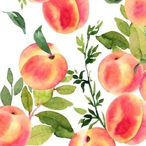 Watercolor Peaches // Medium // White