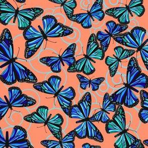 Butterfly Blues on Light orange small