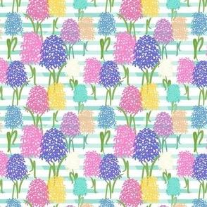 Hyacinth & Stripes