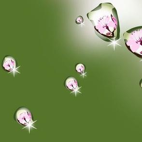 cherry blossom raindrops