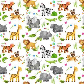 Safari 1 Small