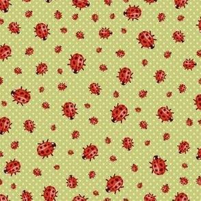 Spotty Dotty Ladybugs