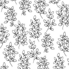 Blaetter schwarz-weiß