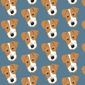 Wire Fox Terrier - Jack Russell Terrier - tan on denim blue