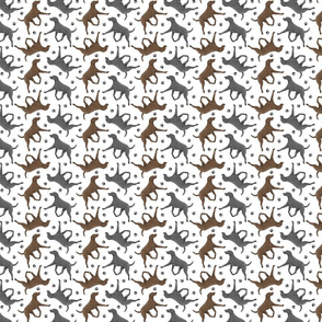 Trotting Curly Coated Retrievers and paw prints - tiny white