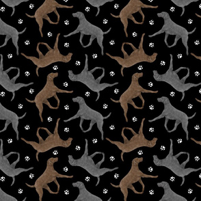 Trotting Curly Coated Retrievers and paw prints - black
