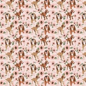 Pandas & Umbrellas