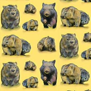 Watercolour wombats