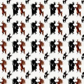Arabian Horse Rearing Good Time - Black Red Horses with White Background