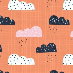 Rain Clouds Coral