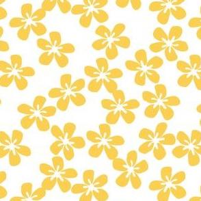 Yellow flowers for Bee Nice