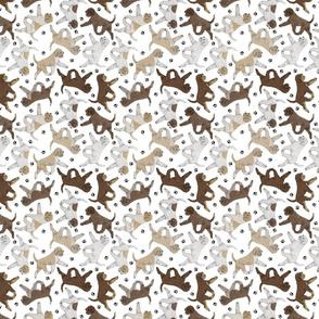 Tiny Trotting Lagotto Romagnolo and paw prints - white