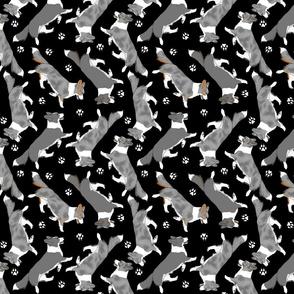 Trotting merle Cardigan Welsh Corgis and paw prints - black