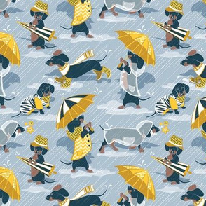 Tiny scale // Ready For a Rainy Walk // pastel blue background navy blue dachshunds dogs with yellow and transparent rain coats and umbrellas