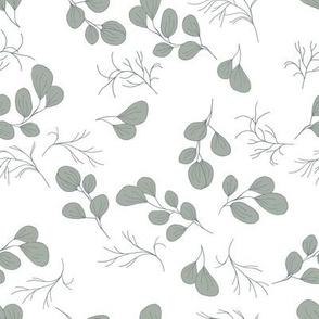 Leaves // sage