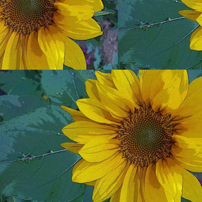 Artistic Sunflower