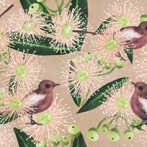 Eucalyptus and bird