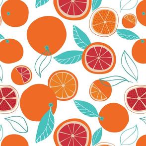 Summer Oranges Citrus