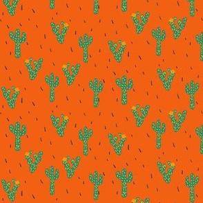 Cactus in Orange