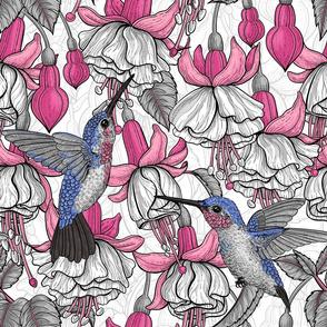 White fuchsia and hummingbirds