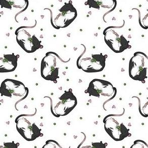Rats & peas white