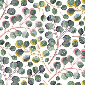 Simple Silver Dollar Eucalyptus Leaves