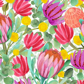 Billy_buttons%2c_protea%2c_eucalyptus_-_australia__watercolor