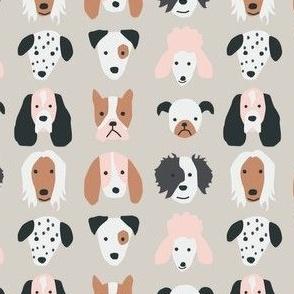 Puppies - mini