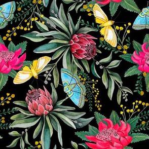 protea watercolor on black