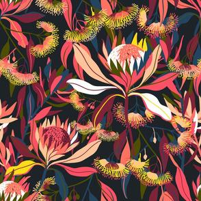 Australian flora 0