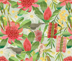 Australian floral garden