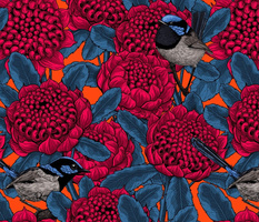 Red waratah and fairy wrens